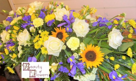Yellow and Blue Coffin Spray