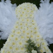 Baby Angel Tribute
