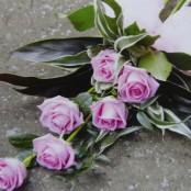 Natural Sheaf of Roses