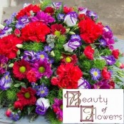 Red Posy Pad S040