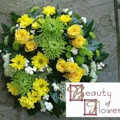 Yellow and Green Posy Pad S111
