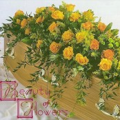 Yellow Rose Coffin Spray S117